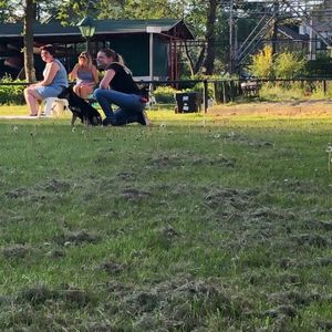 Pim Hondenopvoeding image 3