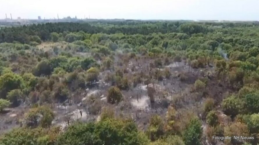 Fles lampolie gevonden bij brandhaard duinbrand Heemskerk: vuur onder controle