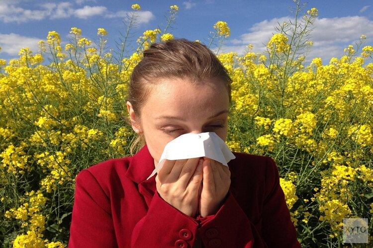 Pollenklachten verwacht door droog weer