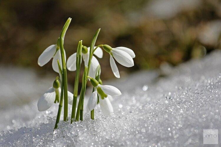 Dit weekend kan het gaan sneeuwen, maar donderdag wordt het twintig graden